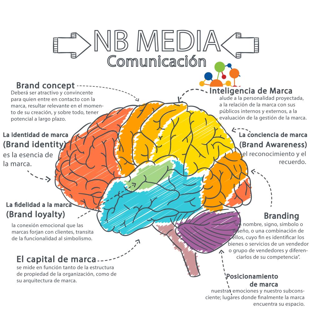 cerebro-nb-media-2generacion-01
